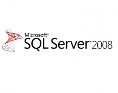SQL Workgroup CAL Lic / SA OLP C User CAL